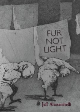 Cover image of Fur Not Light