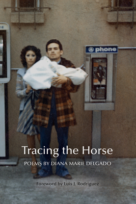 Cover image of Tracing the Horse
