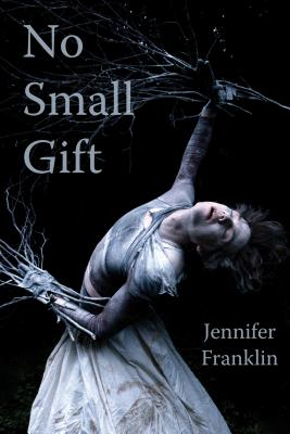 Cover image of No Small Gift